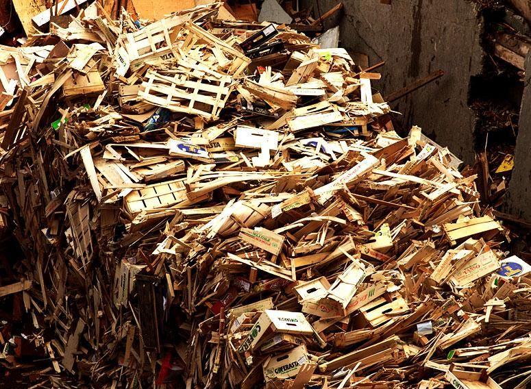 CONSALVI SNC offerta ritiro legno Gubbio - Offerta smaltimento legno Gubbio