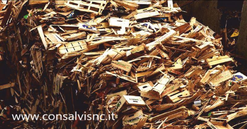CONSALVI SNC offerta smaltimento legno Foligno