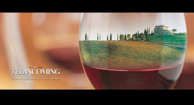 offer of organized vacations in umbria opportunity promotion of cellars visit in umbria