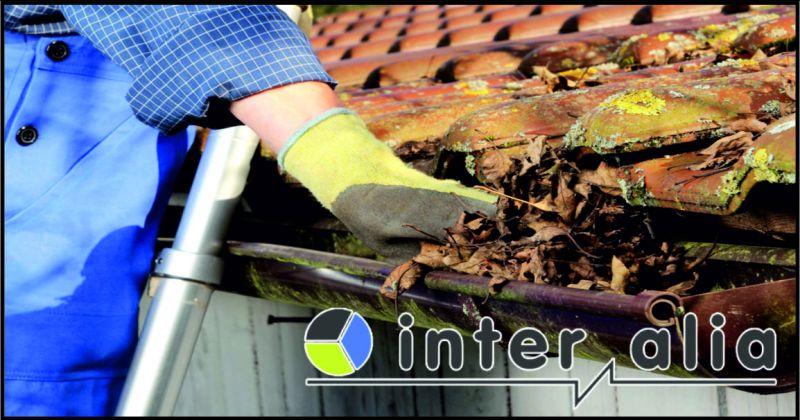 inter italia offerta pulizia gronde - occasione manutenzione coperture e tetti