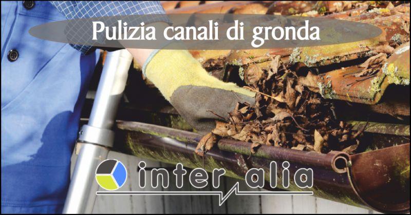 inter alia offerta coperture tetti - occasione pulizia canali di gronda perugia