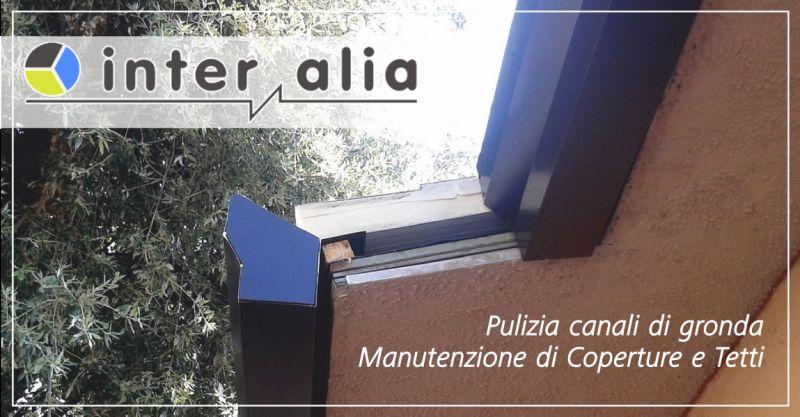 inter alia offerta pulizia canali di gronda - occasione manutenzione tetti perugia