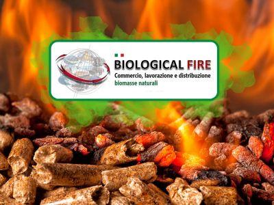 offerta biomasse naturali promozione commercio combustibili naturali biological fire