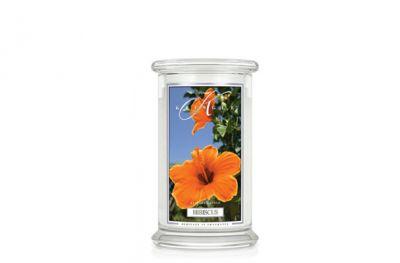 offerta candela hibiscus in giara grande