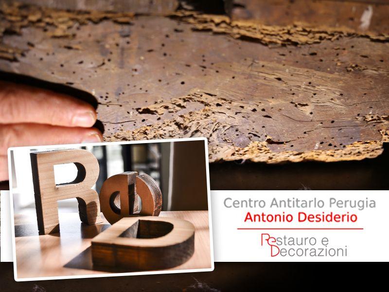 Offerta Trattamenti Antitarlo - Promozione Trattamenti Antiacaro - Centro Antitarlo Perugia
