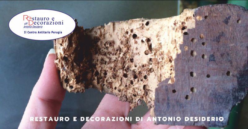 restauro e decorazioni offerta centro antitarlo - occasione trattamenti antitarlo perugia
