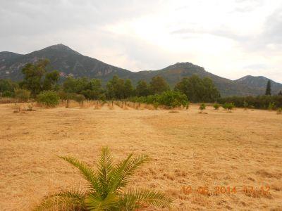 terreno agricolo loc martiada 4 mori immobiliare