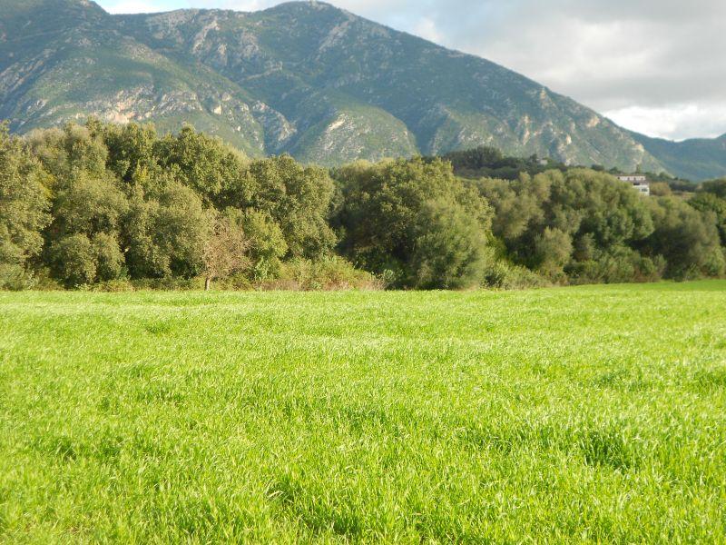 IGLESIAS Località Monti Santu - 4 Mori Immobiliare