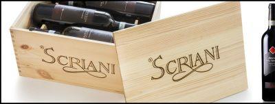offerta scriani produzione ripasso valpolicella occasione produzione vendita vini italiani