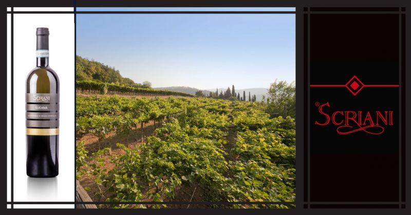 AZIENDA AGRICOLA I SCRIANI - Promozione vendita online vino artigianale Italiano Lugana