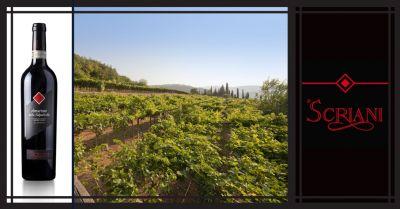 azienda agricola i scriani occasione vendita online vino italiano amarone della valpolicella