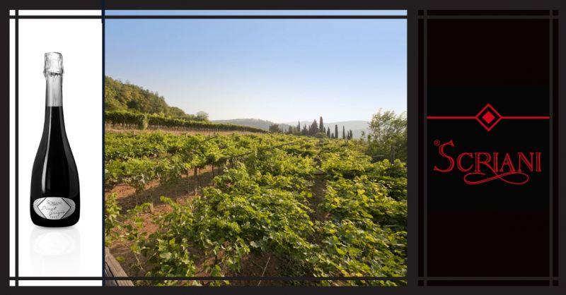 AZIENDA AGRICOLA I SCRIANI - Vendita online Vino Spumante Di Qualità Metodo Classico Extra Brut