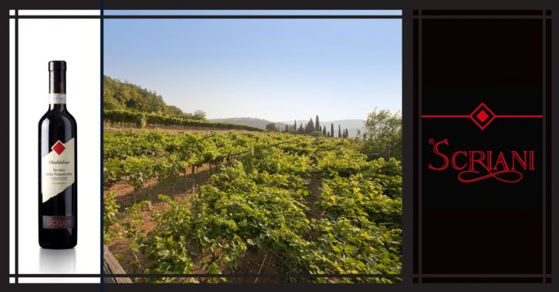 AZIENDA AGRICOLA I SCRIANI - Promozione vendita online vino Italiano Recioto della Valpolicella