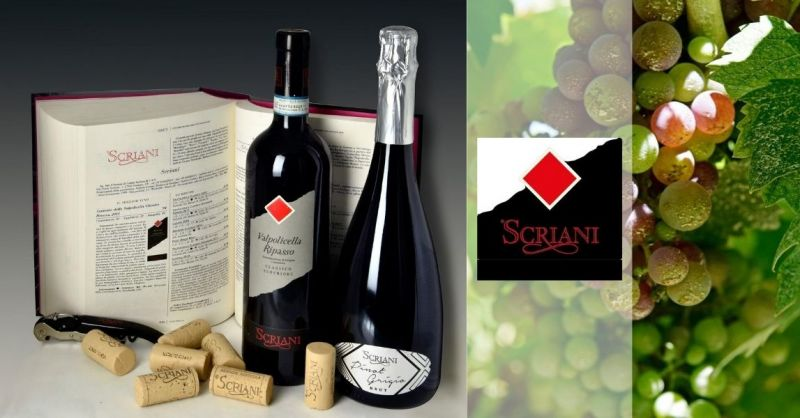 Azienda Agricola Scriani - Trova migliore azienda vinicola produzione vino Amarone Valpolicella