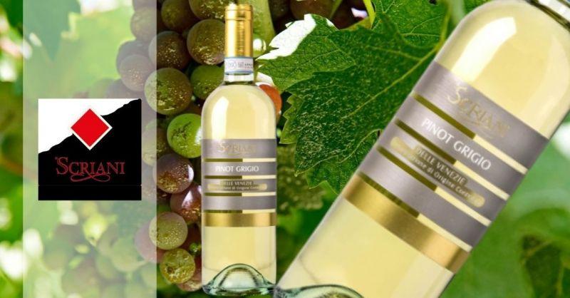 AZIENDA SCRIANI - Occasione VENDITA ONLINE miglior Pinot Grigio Delle Venezie DOC 2019