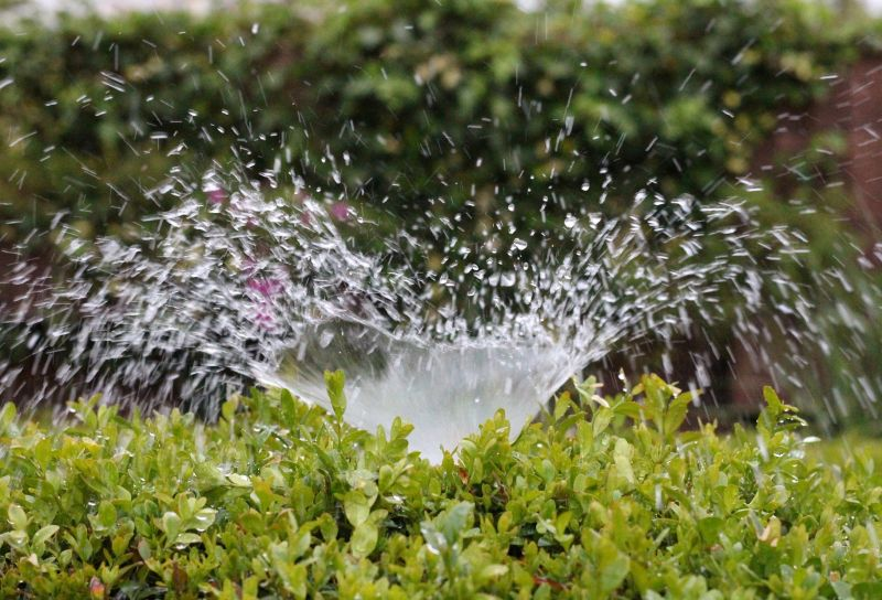 offerta impianti di irrigazione-promozione irrigazione automatica