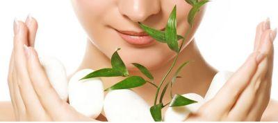 offerta vendita fiori di bach castagno bianco occasione distribuzione prodotti naturali