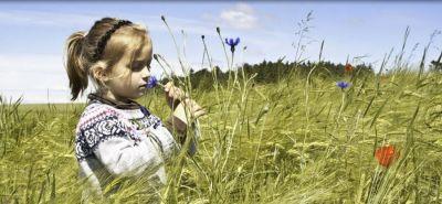 offerta fiori di bach castagno dolce occasione distribuzione prodotti naturali padova