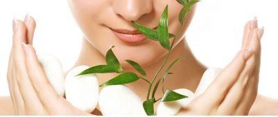 offerta presentazione fiori di bach occasione produzione estratti floreali padova