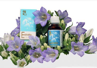 offerta produzione fiori di bach genziana occasione prodotti naturali padova
