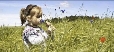 offerta produzione fiore di bach scleranto occasione prodotti naturali padova