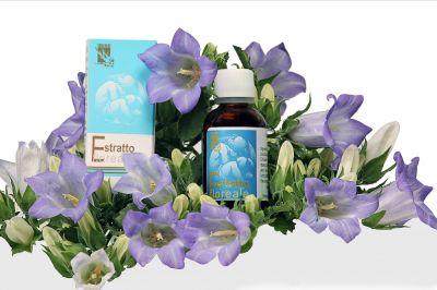 offerta produzione fiori di bach mimmolo occasione produzione estratti floreali padova