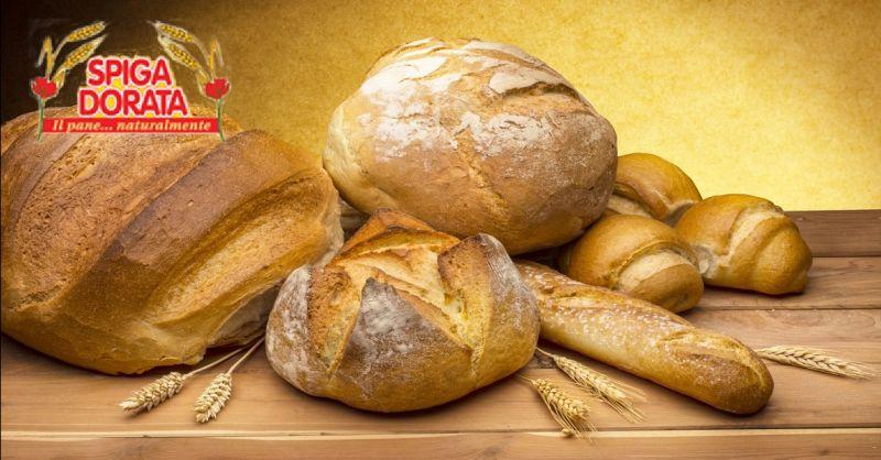 offerta panificio SPIGA DORATA a Verona - occasione vendita pane fresco sfuso e confezionato