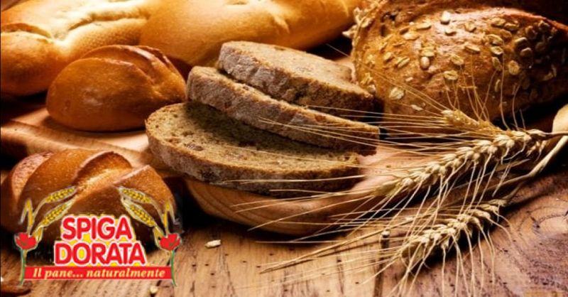 offerta fornitura di pane per ristorazioni Verona - occasione vendita pane per catering Verona