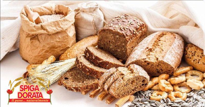 SPIGA DORATA offerta fornitura di pane per comunita - occasione pane per mense ospedaliere