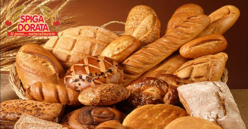 SPIGA DORATA offerta pane per distribuzione collettiva Verona - occasione vendita pane naturale