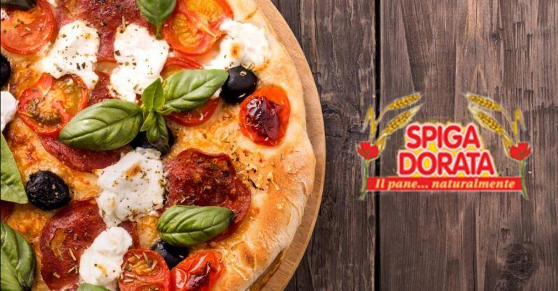 offerta produzione pizze artigianali Isola della Scala - occasione pizze produzione propria