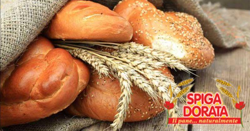 offerta produzione prodotti da forno biologici - occasione vendita pane con lievito madre