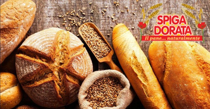 offerta servizio fornitura pane fresco Verona - occasione distribuzione pane per aziende Verona