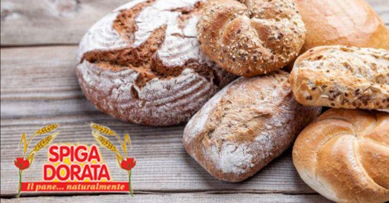 offerta produzione pane per mense Verona - occasione fornitura pane per ristoranti Verona