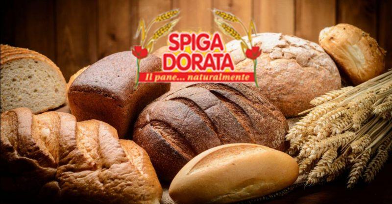 offerta produzione pane integrale Verona - occasione fornitura pane cereali Isola della Scala