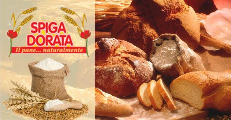 Offerta produzione pane biologico integrale Verona - Occasione fornitura pane per ristorazione Verona