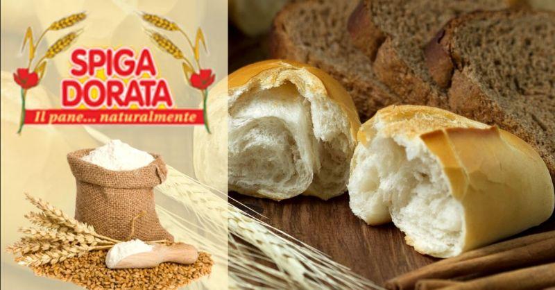 Promozione fornitura pane per società catering Verona - Offerta produzione pane senza additivi Verona