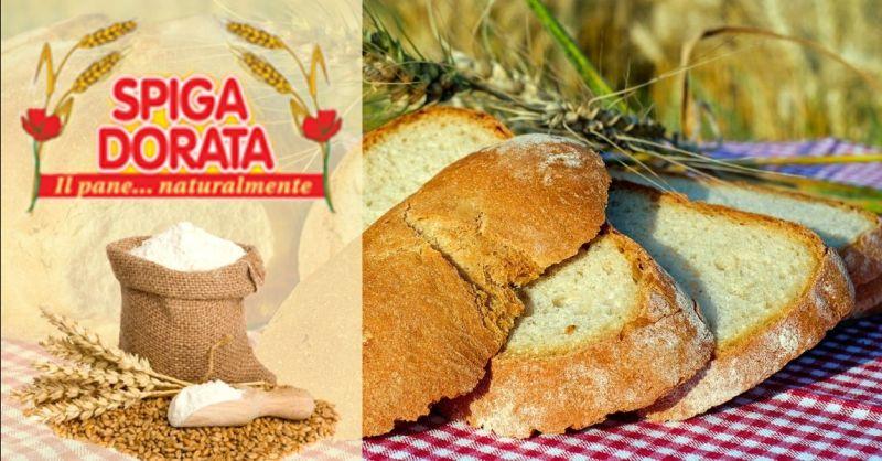 Offerta produzione pane con pasta madre - Occasione distribuzione pane per mense aziendali scolastiche Verona