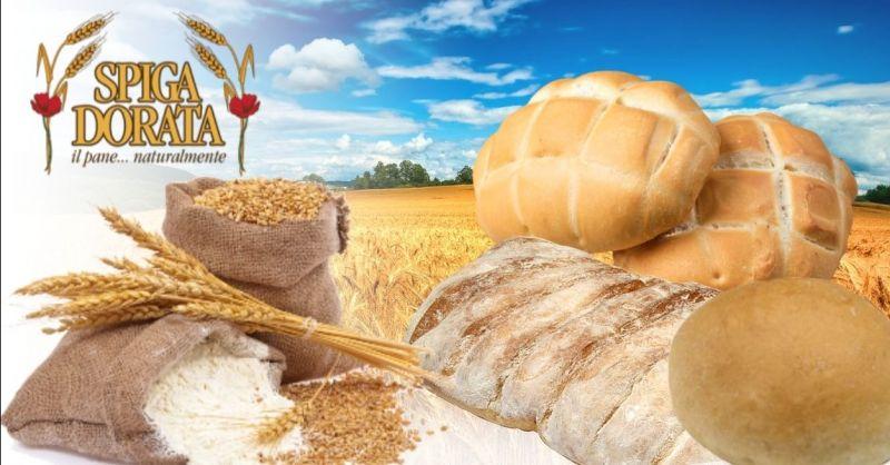 Offerta vendita pane fresco consegna a domicilio provincia Verona - Occasione produzione pizza in pala artigianale