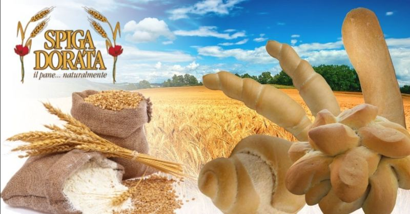 Offerta produzione artigianale panettoni colombe Verona - Occasione fornitura prodotti forno per ristorazione
