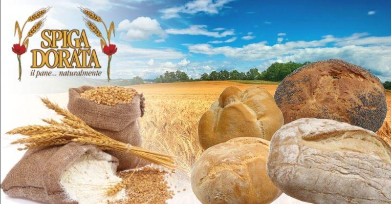Offerta fornitura pane confezionato provincia Verona - Occasione fornitura pane per punti vendita alimentari