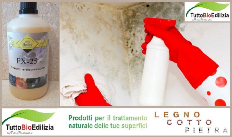 Fx 25 Mangiamuffa offerta prodotto professionale antimuffa - occasione alghicida funghicida