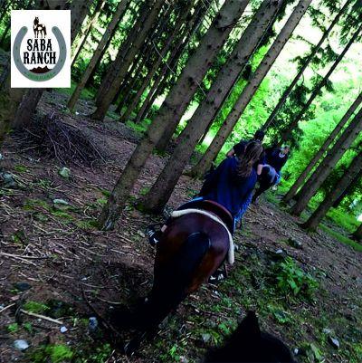offerta escursione a cavallo lecco promozione escursione a cavallo in omaggio lecco saba ranch