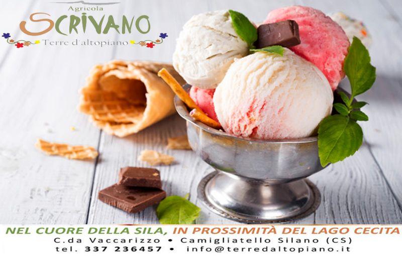 Offerta gelato artigianale cosenza - occasione gelato bio cosenza - offerta gelato artigianale