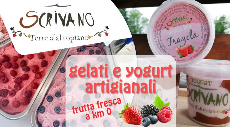 Offerta gelato e yogurt artigianali Cosenza - Occasione gelato artigianale senza conservanti Sila Cosenza