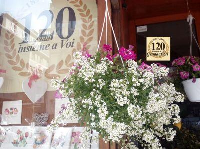 germanfiori offerta vendita piante verdi e fiorite per interni e esterni