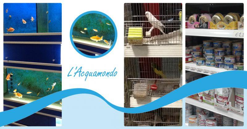 offerta negozio acquari chiaravalle - promo alimenti accessori animali domestici chiaravalle