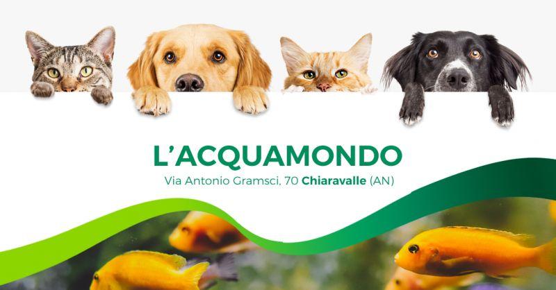 Offerta Alimenti Accessori Animali Domestici Chiaravalle - Occasione Antiparassitari Cani Gatti Chiaravalle