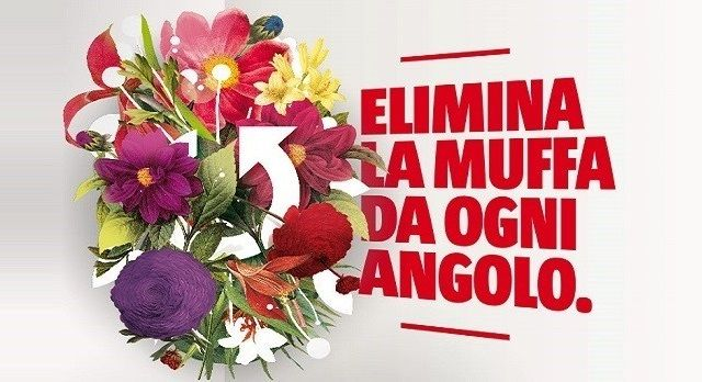 Offerta vendita prodotti antimuffa Verona - Promozione acquisto prodotto antimuffa per la casa