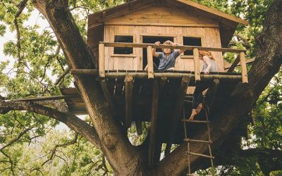 offerta vendita impregnanti finiture per casette occasione vernice arredi da giardino in legno